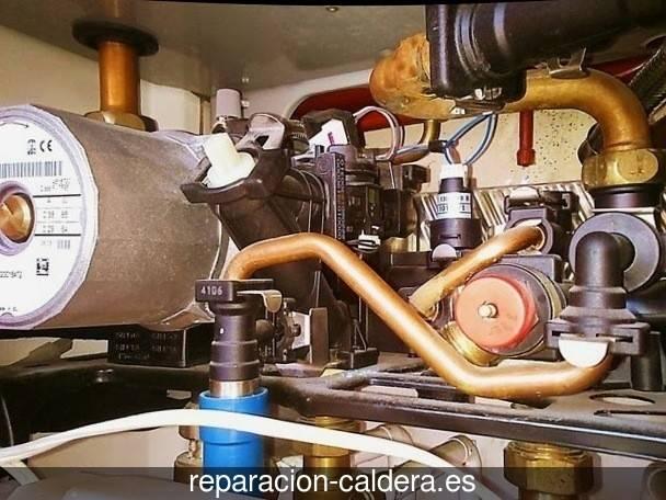 Reparación Calderas Saunier Duval en Brahojos de Medina