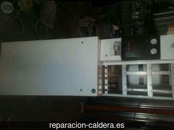 Reparación Calderas Saunier Duval en Instinción