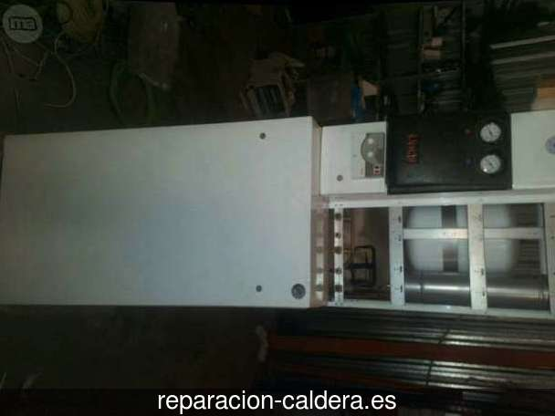 Reparación Calderas Saunier Duval en Paso