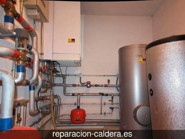 Reparación Calderas Saunier Duval en Ugao-Miraballes