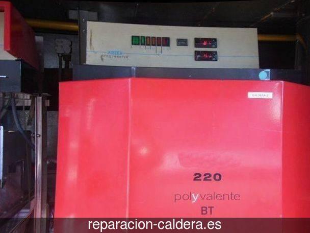 Reparación Calderas Saunier Duval en Baena