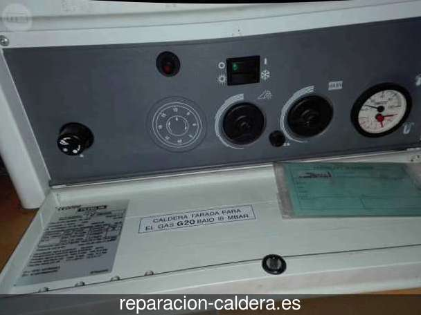 Reparación Calderas Saunier Duval en Velayos