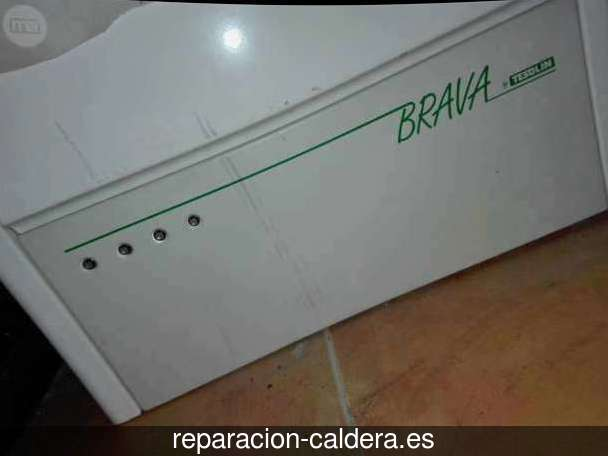 Reparación Calderas Saunier Duval en Alhambra
