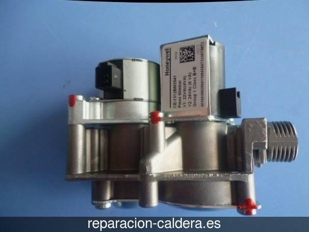 Reparación Calderas Saunier Duval Barca