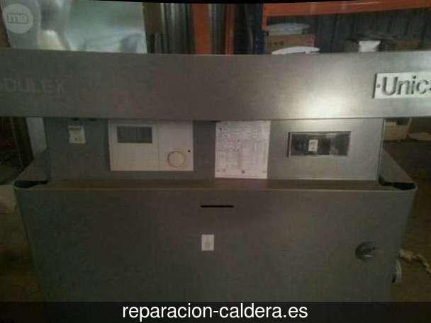 Reparación Calderas Saunier Duval Jurisdicción de Lara