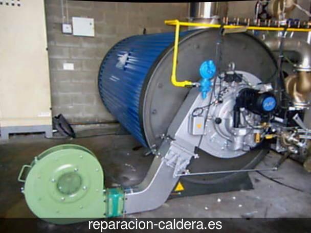 Reparación Calderas Saunier Duval en Orellana de la Sierra