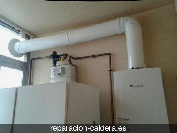 Reparación Calderas Saunier Duval en Álora
