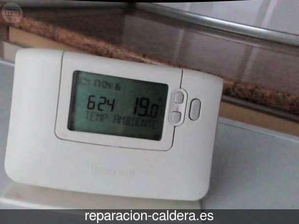 Reparación Calderas Saunier Duval Berriatua