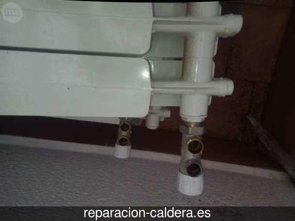 Reparación Calderas Saunier Duval en Tordoia