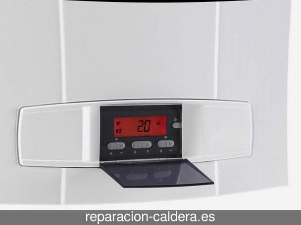 Reparación Calderas Saunier Duval en Alhama de Granada