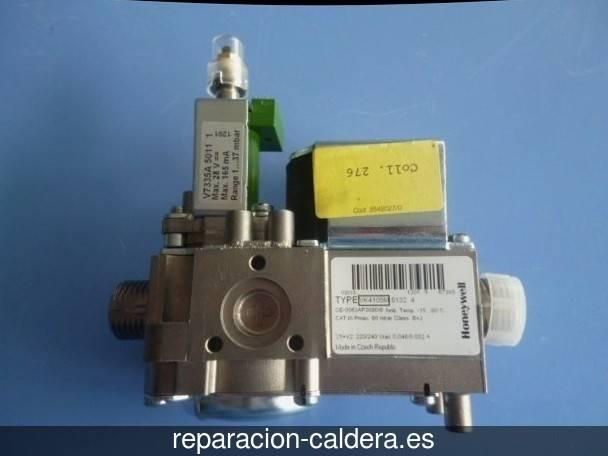 Reparación Calderas Saunier Duval en Villaciervos