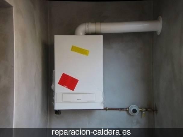 Reparación Calderas Saunier Duval Bonares