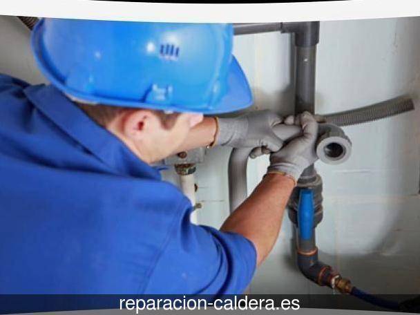 Reparación Calderas Saunier Duval en Pino