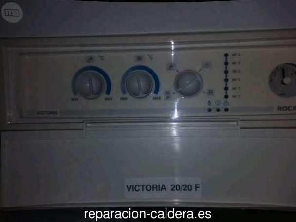 Reparación Calderas Saunier Duval en Torrebaja