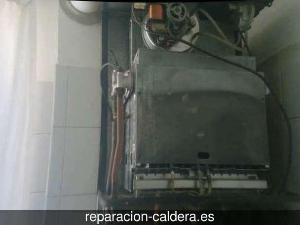 Reparación Calderas Saunier Duval en Teresa