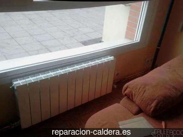 Reparación Calderas Saunier Duval en Fuentes de Ebro