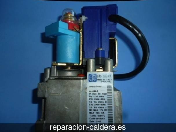 Reparación Calderas Saunier Duval Píñar