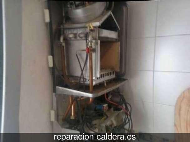 Reparación Calderas Saunier Duval Fuentes de Ayódar