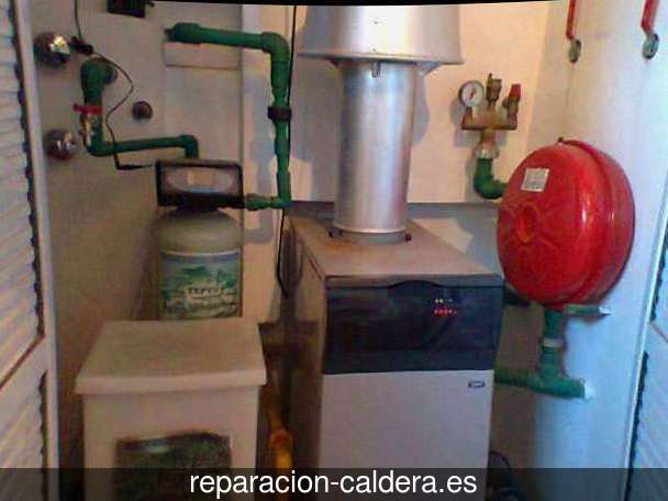 Reparación Calderas Saunier Duval en Niebla