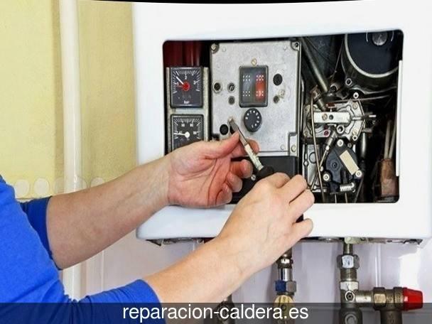 Reparación Calderas Saunier Duval Zalla