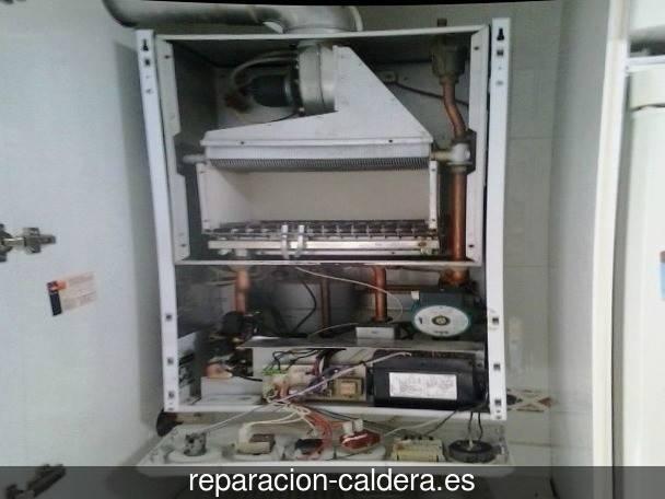 Reparación Calderas Saunier Duval en Alicún de Ortega