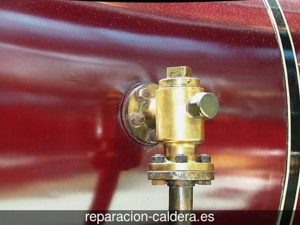Reparación Calderas Saunier Duval en Alamedilla