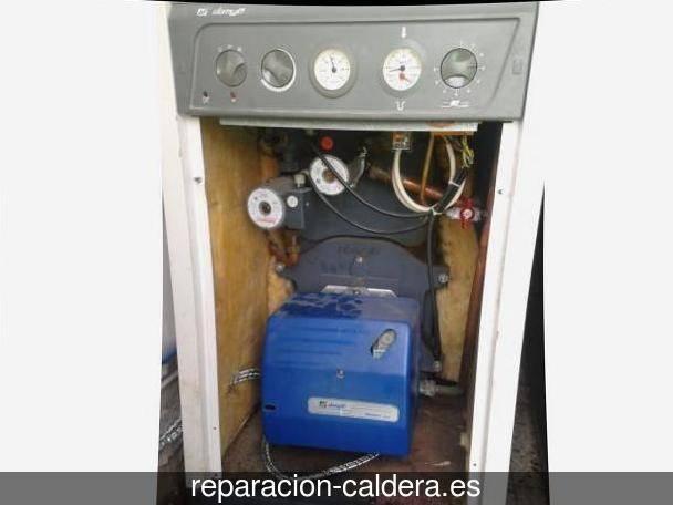 Reparación Calderas Saunier Duval Adrada