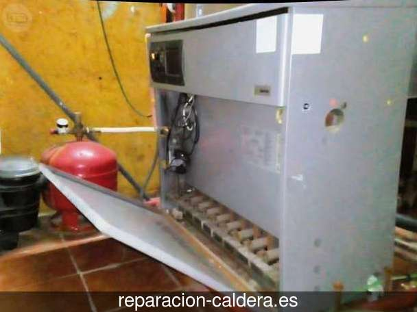 Reparación Calderas Saunier Duval en Olivares de Duero