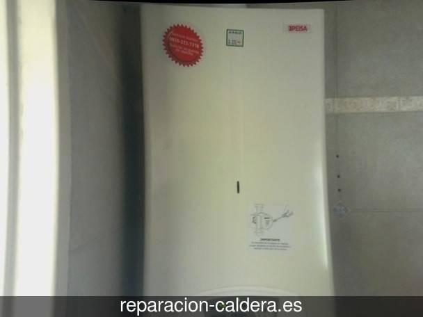 Reparación calderas de gas Cisla