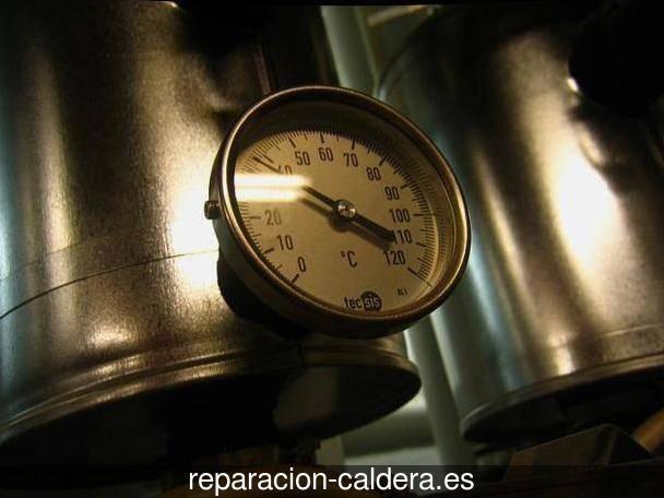 Reparación calderas de gas en Castroviejo