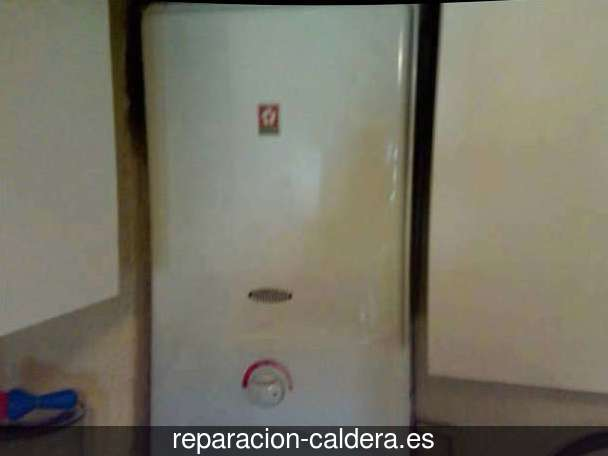 Reparación calderas de gas Quintana del Pidio