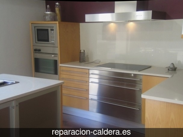 Reparar calderas de gas en Purchena
