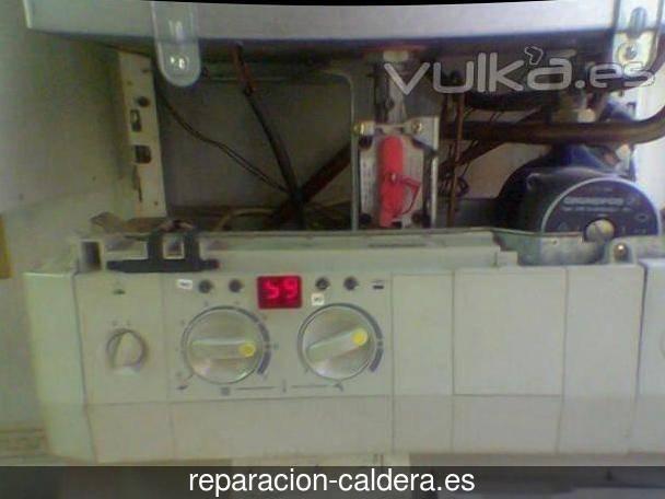 Reparación calderas de gas en Mallén