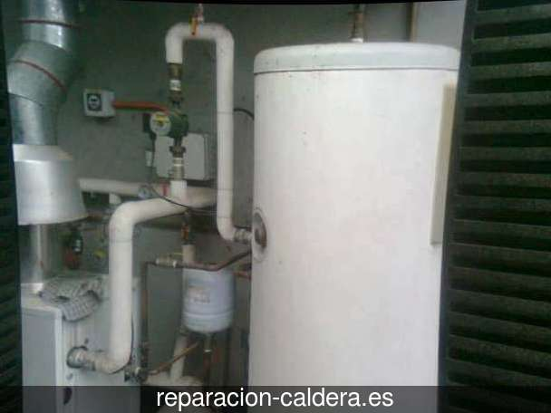 Reparación calderas de gas Berdejo