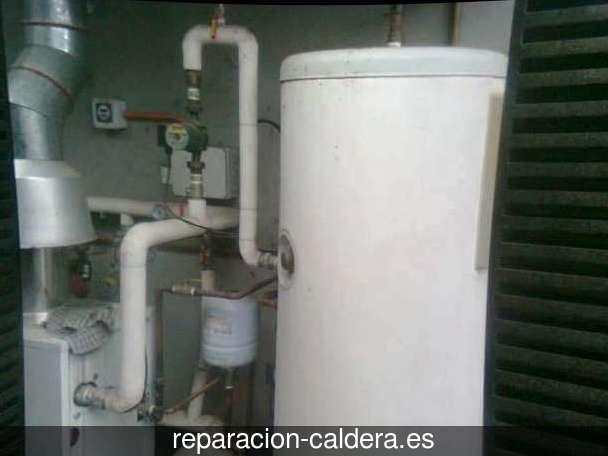 Reparación calderas de gas Oyón-Oion