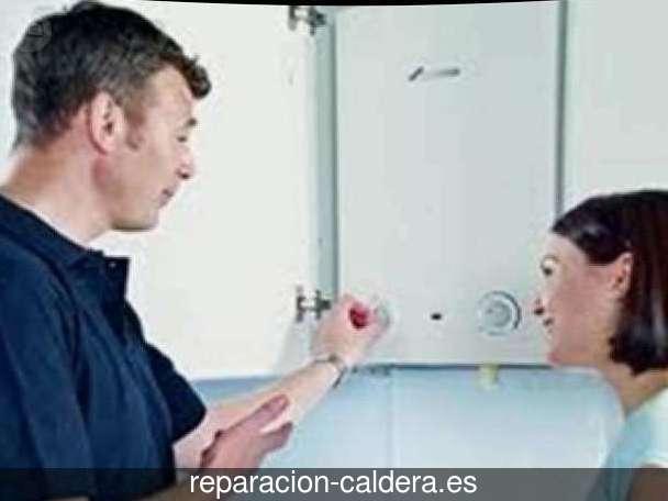 Reparación calderas de gas Olmedo
