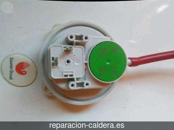 Reparar calderas de gas Cabezas Rubias