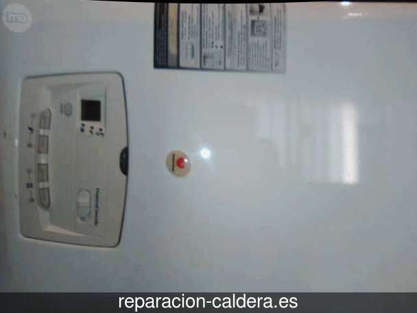 Reparación calderas de gas Bayárcal