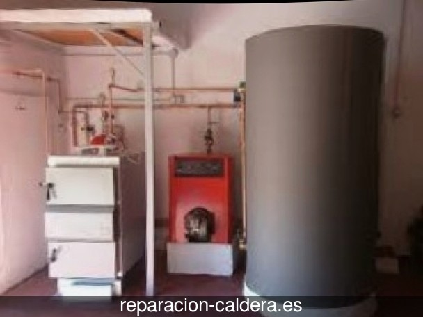 Reparación calderas de gas Masies de Voltregà