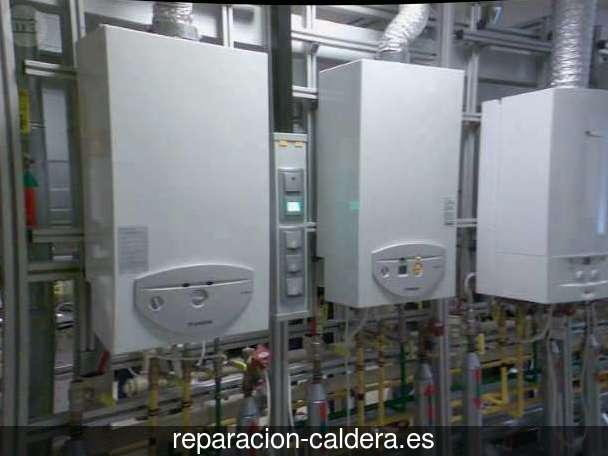 Reparación calderas de gas en Cenizate