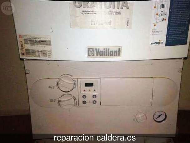 Reparar calderas junkers Contamina