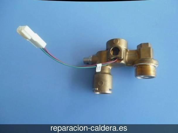Reparación calderas junkers Pinilla Trasmonte