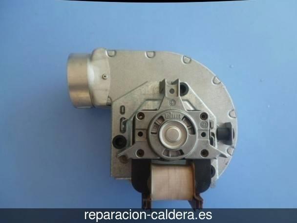 Reparación calderas junkers en Gascueña