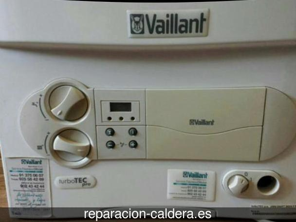 Reparación calderas junkers Pelahustán