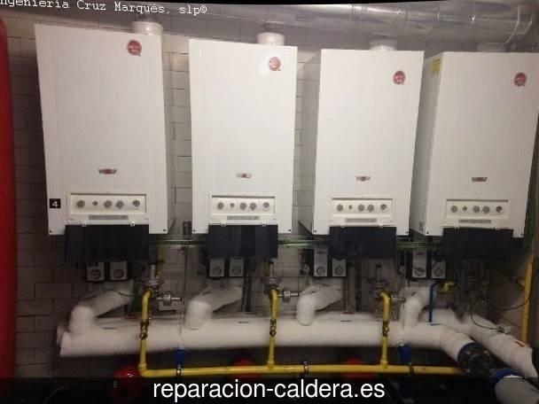 Reparar calderas junkers Oyón-Oion