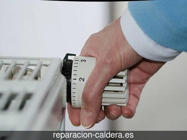 Reparación calderas junkers en Torre de Esgueva