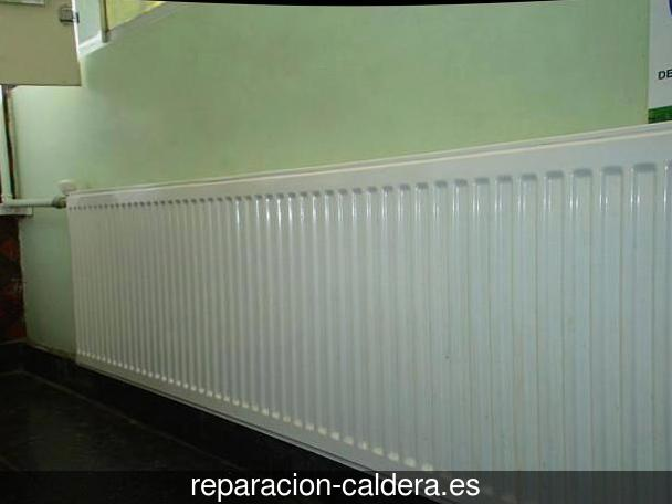 Reparar calderas junkers Pueblica de Valverde