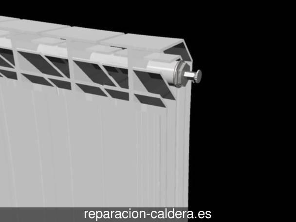 Reparación calderas junkers en Erandio