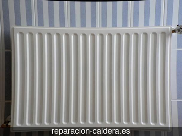 Reparación calderas junkers en Bargas