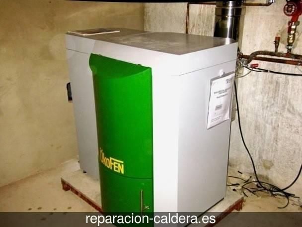 Reparación calderas junkers en Cabezas Rubias